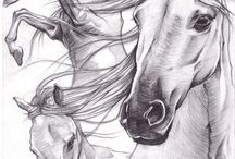Koniacze(k)
