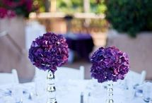 Hydrangea wedding flower photos