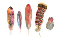 Feathers and Ferns / In their simplicity, I find them charming... / by Amy Woods Watercolors