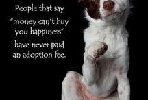 My doggie...lucky