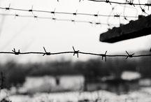 """Exhibition """"DORIN GOIAN"""" / O olhar não descansa sobre um plano, procura limites, procura barreiras. Para o fotógrafo Dorin Goian a barreira não é onde tudo termina, ultrapassa-la é convocar o olhar a envolver-se no novo."""