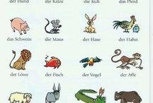deutsch für kindergarten