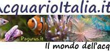 AcquarioItalia.it