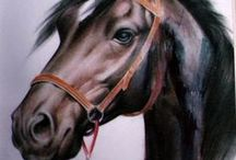 caballos