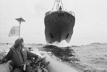Más de 30 años de lucha contra la caza de ballenas / Por más de 30 años, Greenpeace trabajó defendiendo las ballenas en el océano antártico. Mirá la galería de fotos para conocer algunas de nuestras acciones.   / by Greenpeace Argentina