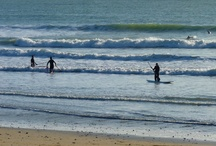 Sports de glisse / L'île d'#Oléron c'est l'endroit rêvé des amateurs de glisse et de sensations fortes. Les vagues, les longues plages sauvages et la diversité des activités, depuis le surf, kitesurf, la planche à voile ou encore le char à voile rendront vos vacances mémorables. / by Jardins Aliénor