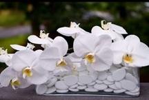 Florist / Blomster dekorationer /