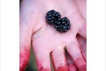 Blackberry / by Elinor Dijon