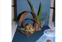 Petite Floral Designs / Floral designs less than 8 inches tall. / by National Garden Clubs, Inc.