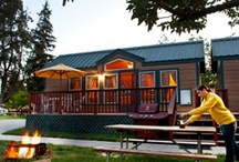 Deluxe Cabins & Camping Cabins  / by Barrie KOA Campground