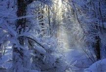 winter, zima ....