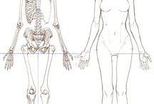 kroppa