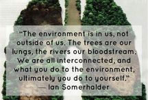 Quotes about the Environment