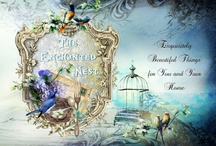 The Enchanted Nest Boutique / The Enchanted Nest, is above all else a dream!!! A compendium of styles, merchandise and ideas,fused to create a unique shopping experience, like walking into a fantasy! http://theenchantednest1.blogspot.com/  We also have a page on Facebook at: https://www.facebook.com/theenchantednest/timeline You can also find us on Instagram at: https://instagram.com/theenchantednest/ We are located in #WashingtonHeights, #NewYork and open by appointment only,