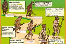 préhistoire maternelle