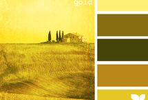 Color Palettes - Warms, Deeps, & Much More / by Caroline English