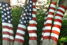 Red,White and Blue / My Three Favorite Colors / by Elaine Lastovica DeWitt