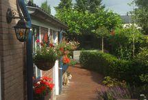 tuin (jaren 30 woning lange tuin)