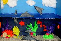 dolphin habitat project