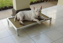 Bull Terrier / Bull Terriers and their Kuranda beds! / by Kuranda Dog Beds