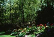 Gardening / Garden Design