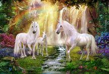 Jan Patrik Krasny-horse Beautiful