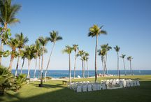Other Venues We Adore / Explore the different event venues throughout Mexico that we love to work with!