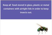 Pest Prevention Facts / How to prevent those annoying and trouble making #Pests