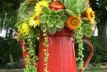 fleures et jardins