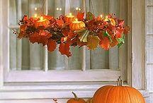 Fall / by zander