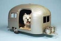 Tiny Dog Stuff!