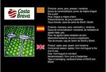 Costa Brava Fructicultors SL / Cooperativa de Fruita d'Ulla