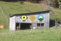 Barn Quilts / by Therese Leiszler