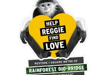 Help REGGIE Find Love / As part of our commitment to protect and enrich the world we live in, we're building Bio-Bridges. Bio-Bridges are restored wildlife corridors within damaged landscapes that help endangered species reconnect, enabling them and local communities to thrive. Each contribution can enable us to help restore 1 square metre of threatened rainforest in Khe Nuoc Trong, Vietnam.
