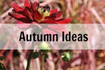 Syysideoita | Autumn Ideas / Enjoy the Autumn and Find Your Inspiration in Blazing Colors, Candles and the Feeling of Cosiness! Rakastan syksyn kirpeitä aamuja ja kurpitsankeltaista valoa! Ihana vuodenaika, eikö totta!