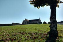 Pic nique dans l'Yonne