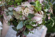 Blomster / Buketter og stilleben