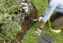 Garden ideas / Favourite Plants