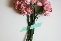 Carnations...my favorite / by Maria Maberto