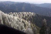 Hiking Mount Le Conte / For Mt. Le Conte hikers. The ebook More Than 1,001 Hikes to Mt. LeConte and Counting, written by Ed Wright, is available here: http://bit.ly/1wcAlGN. Proceeds benefit Friends of the Smokies.
