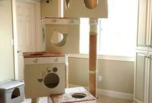 cat houses and toys