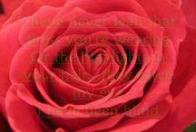 Kobieta w czerwieni