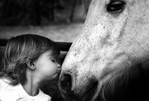 Spirit Horse, Heart & Soul / Horses Horses and More Horses. Horse photography, horse quotes, cowboys, cowgirls, children, animals, and funnies too. Pictures that make your heart smile :)