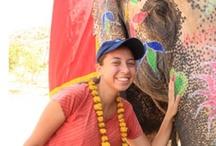 Jaipur / #Jaipur -  #Abish Travels  http://www.abishtravels.com/jaipur-tours.php