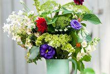 Cut Flower Garden / Layouts, designs, plant selections