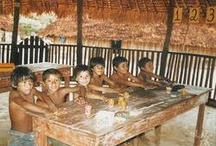 Waimiri / xapiri.com curated board in reference to the Waimiri indigenous people of Waimiri, Brazil.