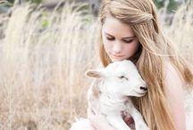 Counting Sheep and Lambs