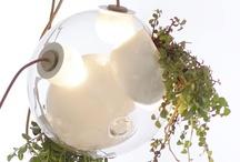 Tendance lumière printemps-été / Vous  pensez  à l'éclairage de votre maison ? Suivez la  tendance lumière printemps-été Tendance lumière printemps été : Donnez de la fraîcheur à votre espace ! pour donner un effet original à votre intérieur.   Latendance lumière printemps-été Tendance lumière printemps été : Donnez de la fraîcheur à votre espace ! se représente sous la forme des traditionnels néons en verre et enseignes lumineuses. www.tafdeco.com