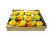 Alphonso Mangoes at the Bombay Store / fresh superior quality devgad, carbide free Alphonso mangoes