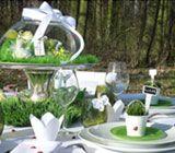 Baptême Printanier / Des fleurs, des papillons, de la verdure... Retrouvez la saison du Printemps pour le Baptême de votre enfant !